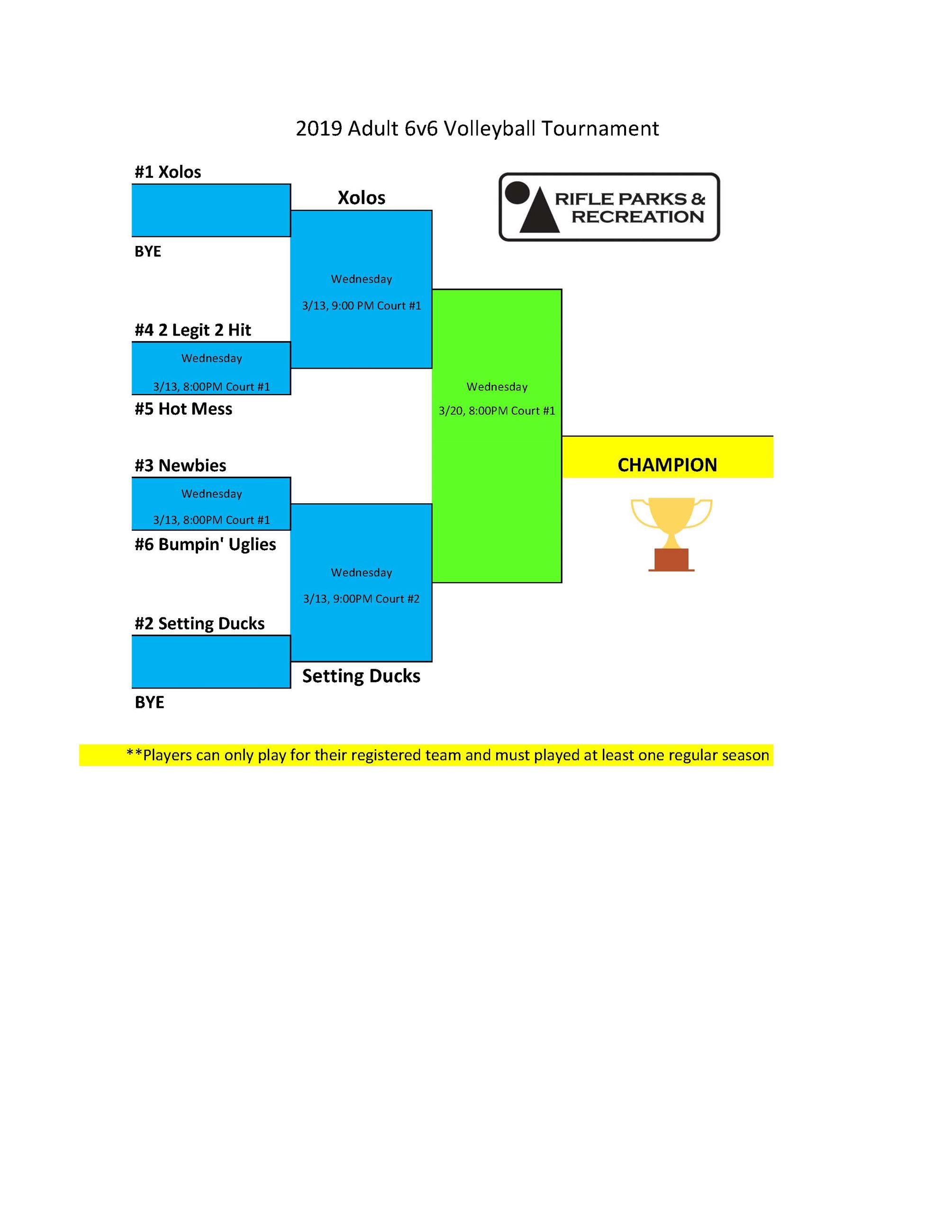 2019 Adult Volleyball 6v6 bracket_Page_1